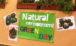 نقاشی روی سنگ با هدف حفظ محیط زیست